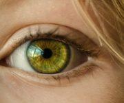 Cara Membersihkan Wajah Berminyak Secara Alami dan Aman